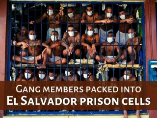 Gang members packed into El Salvador prison cells